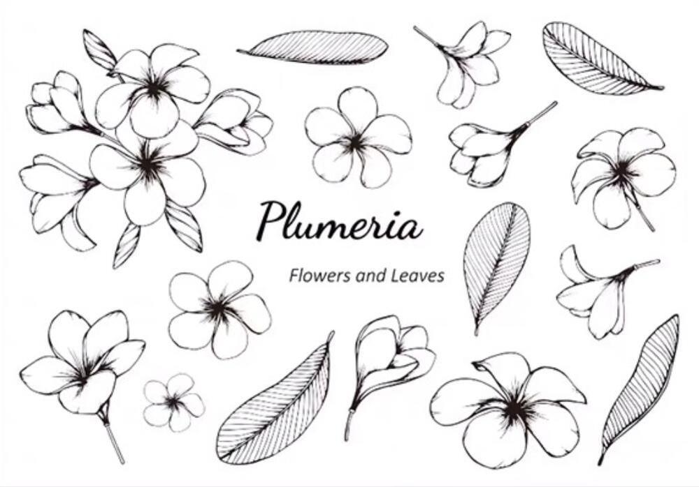 Sello de silicona transparente floral sello álbum para recortes de fotos decorativo B092