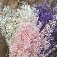 Bouquet de fleurs gypsophiles naturelles et fraiches pour bebe  Bouquet de fleurs sechees et conservees  pour la decoration de la maison  DIY bricolage  60g