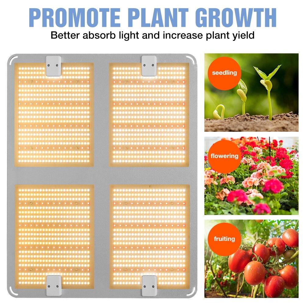 LED Plant Lamp 4000W Full spectrum Grow Light 1000W 2000W Indoor Quantum Board Phyto Growth Bulb 220V Hydroponics Grow Tent Box enlarge