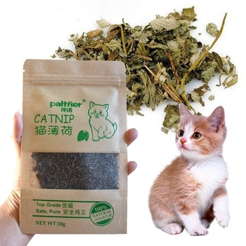 Catnip Pet Supplies Menthol Flavor Funny Cat Toys New Organic 100% Natural Premium Catnip Cattle Grass 10g Pet Products