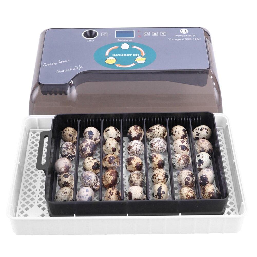US/AU/EU/BG enchufe 12 huevos incubadora de granja automática incubadora de aves de corral máquina de incubadora nueva máquina de incubadora