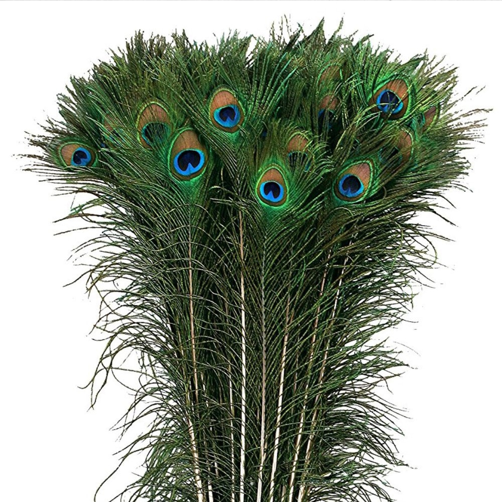 20 Pcs/Lot Natural Real Peacock Feathers For Crafts 25-80cm Dress Is With Home Hotel Decor Room Vase Wedding Decoration Plumes wholasale elegant black ostrich feathers for crafts 15 70cm 6 28inch wedding party supplies carnival dancer decoration plumes