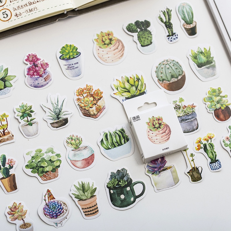 moym-50-pezzi-adesivi-in-scatola-sentimenti-di-succulente-adesivi-creativi-simpatici-cartoni-animati-pianta-adesivo-fiocchi-scrapbooking-regalo-ragazza-sch