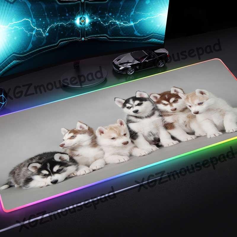 Alfombrilla de ratón XGZ Animal lindo perro Husky alta definición personalizado grande RGB cierre negro borde alfombrilla para escritorio de ordenador goma antideslizante Xxl