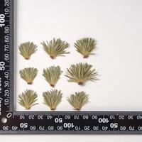 120pcs pressed dried flower pine needle herbarium epoxy resin face make up nail art jewelry bookmark phone case card diy