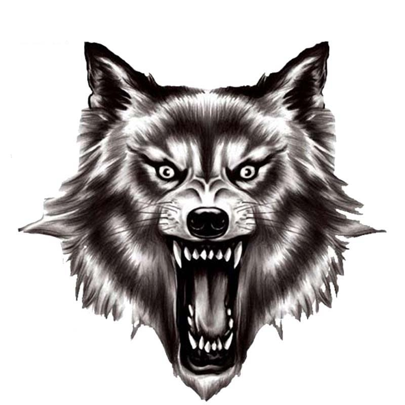 Ferocious Wolf Quality Car Stickers Decals Car Window Car Decorative for Rear  Window Trunk  KK14*14