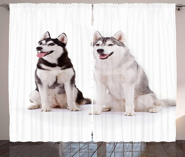 Cortinas de Alaskan Malamute para perros, peludas Arctic para perros Husky Whelp,...