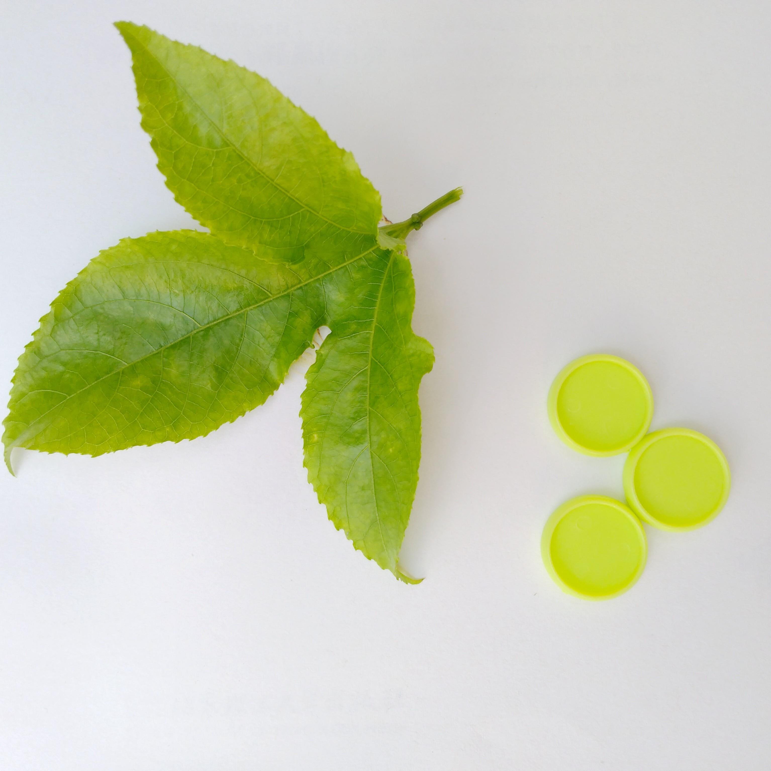 12pcs Binding Loose-leaf Binder of 20mm Color Plastic Disc Buckle Disc T-shaped Umbrella Mushroom Hole Loose-leaf Binder