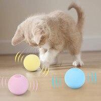 Кошачья игрушка