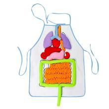 Kids Anatomy Apron Human Body Organs Awareness Educational Insights Toys for Children Preschool Science Homeschool Teaching Aids