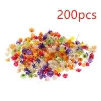 Vraies fleurs sechees en resine epoxy  200 pieces  pour bricolage  artisanat  fabrication de bougies  bijoux decoratifs de fete a domicile