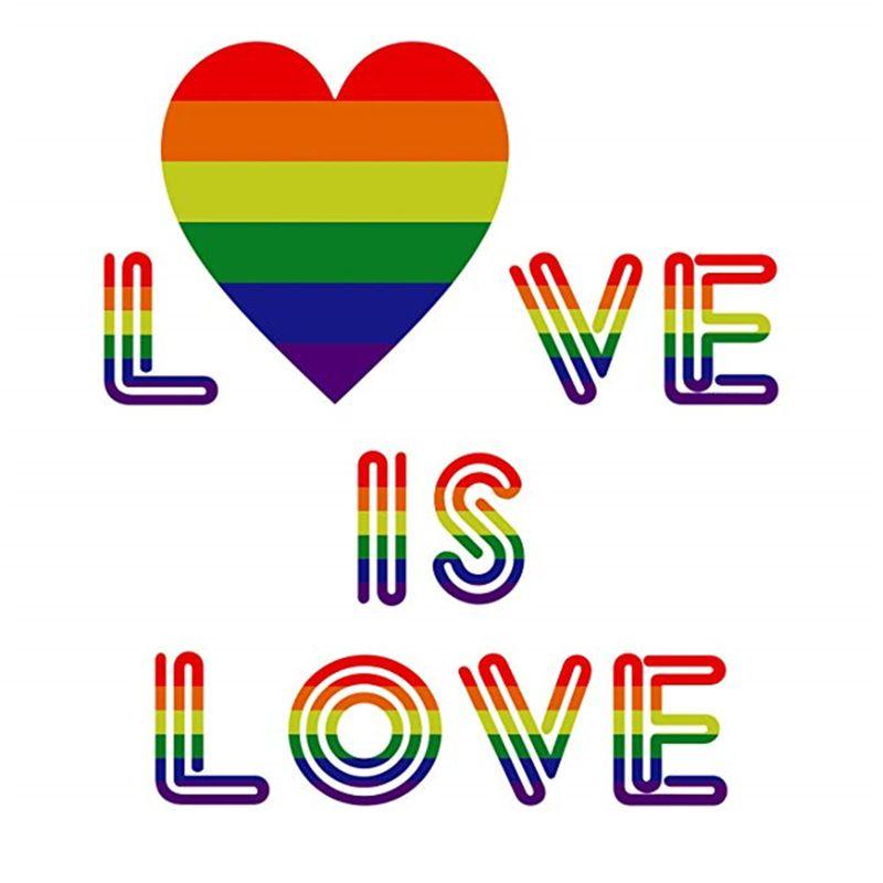 500 piezas de pegatinas de arcoíris Gay Pride en un rollo, soporta causas LGBT, forma de corazón (corazón) Y4QA