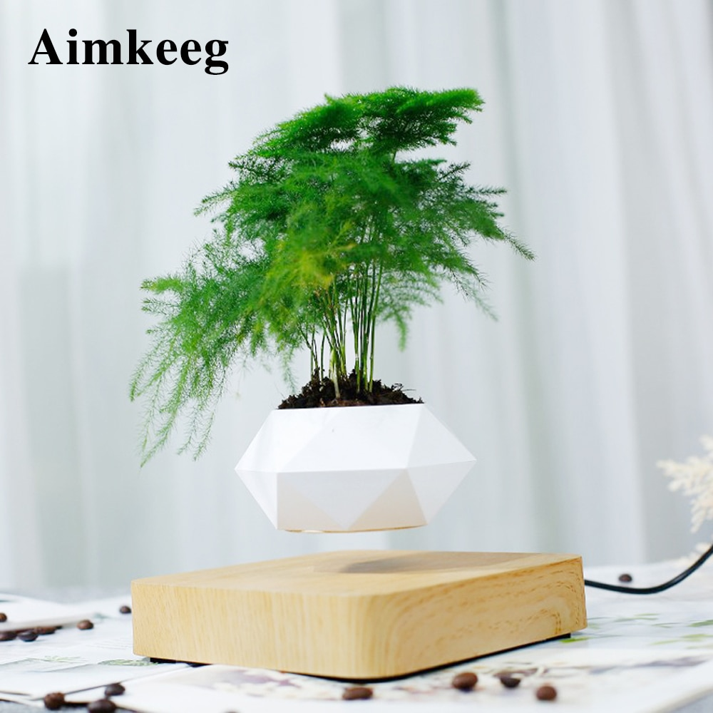Novelty Levitating Pot Light Rotation Air Bonsai Planters Magnetic Levitation lamp Flower Floating Potted Plant for Decor Gift