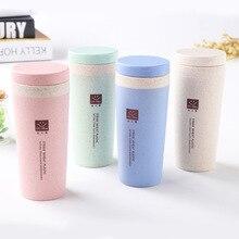 Tasses de paille de blé tasse thermique deau Thermos isolée de 300 ml