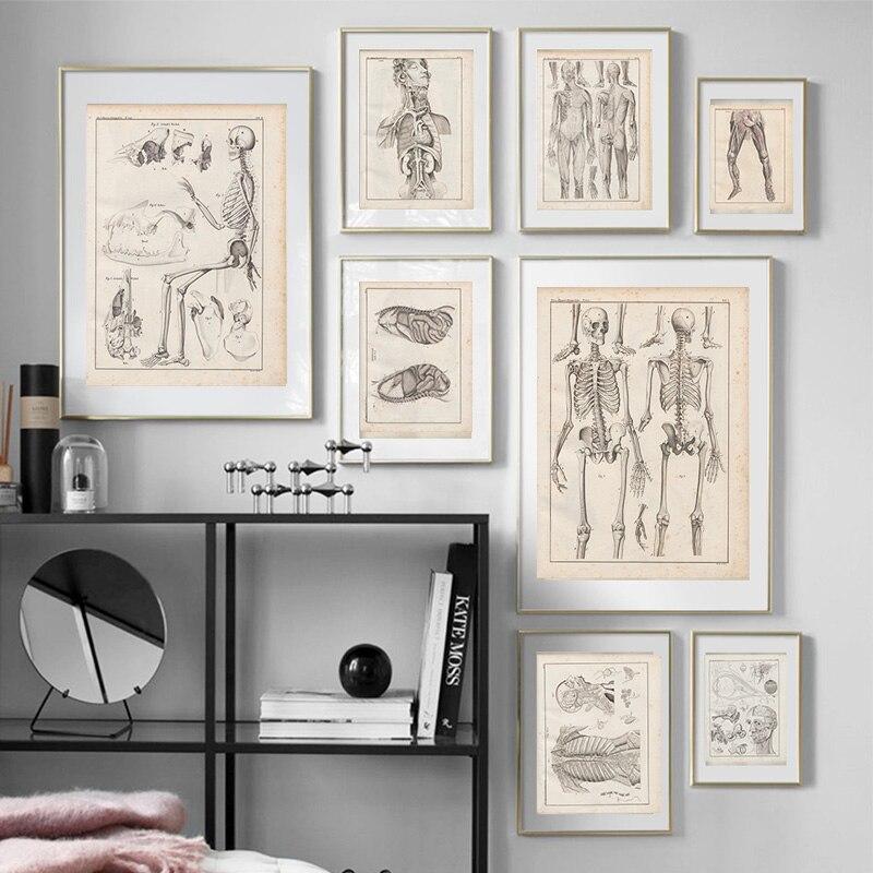 Póster Vintage con diseño de esqueleto de anatomía, pintura en lienzo impreso, carteles nórdicos e impresiones para sala de estar