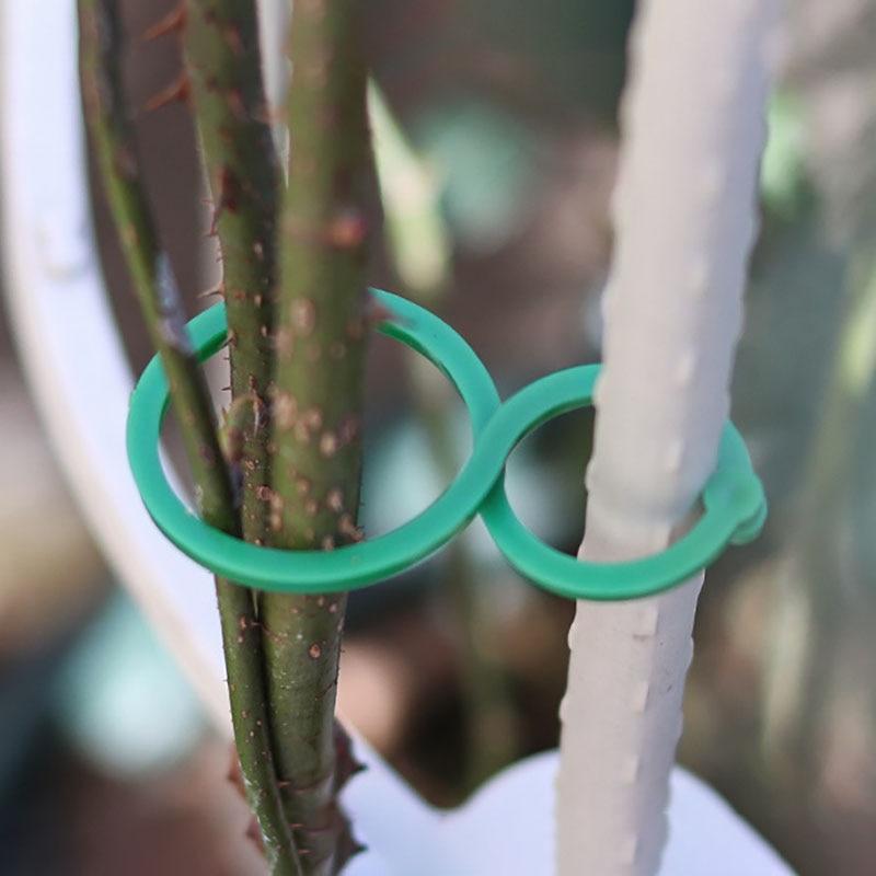 Soporte de plantas de jardín, Clips de soporte de enredadera para cultivo...