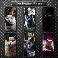 british shorthair cat phone case for huawei p40 pro lite p8 p9 p10 p20 p30 psmart 2019 2017 2018