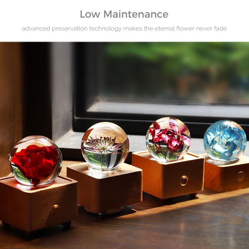 Portable Mini BT Speaker LED Night Light Music Box Crystal Ball Dry Flowers Inside Valentine And Mother's Day Gifts Home Decor enlarge