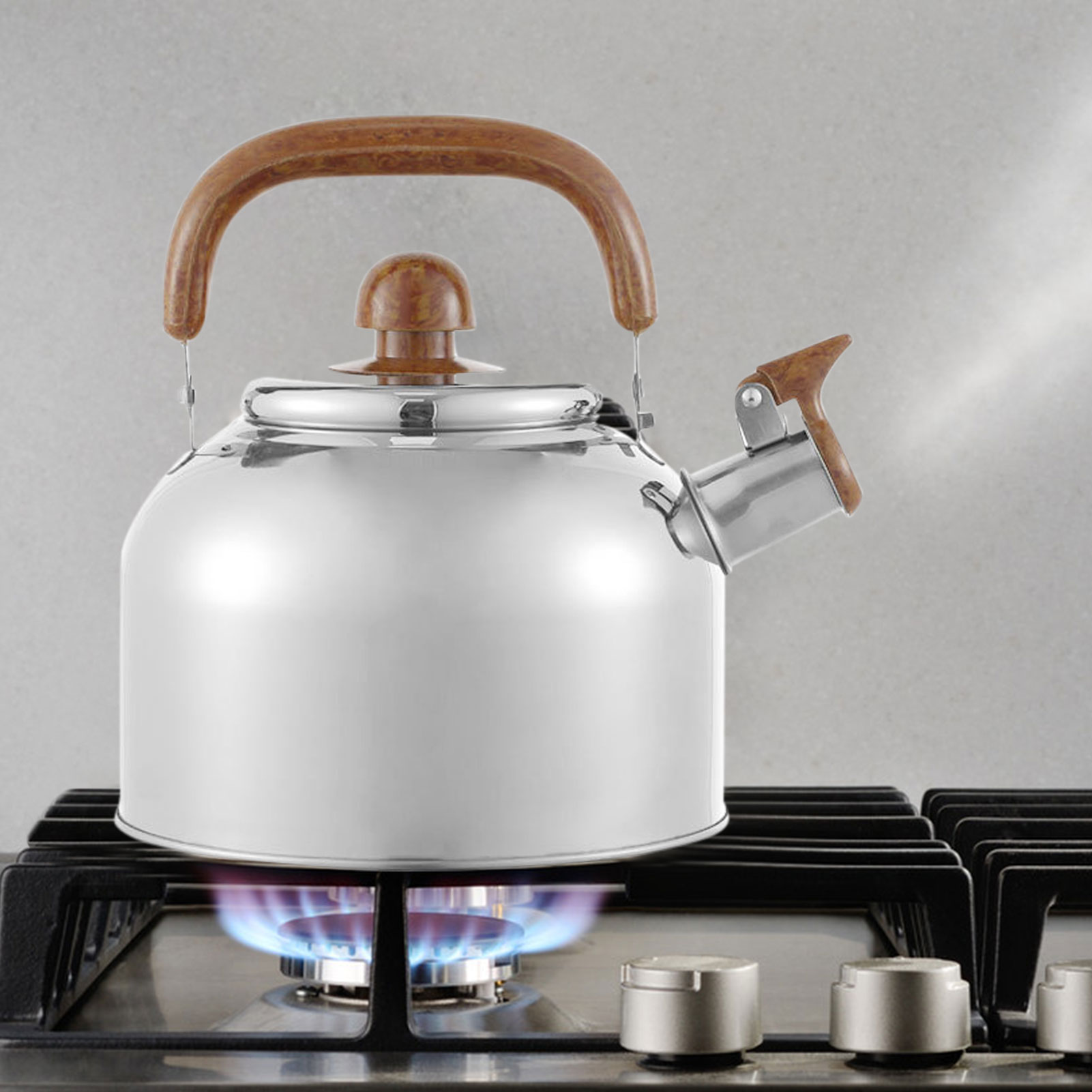 3L غلاية الفولاذ المقاوم للصدأ السبر سعة كبيرة صافرة الغاز الغاز التعريفي طباخ إبريق الشاي غلاية معدنية براد شاي مخيم المطبخ