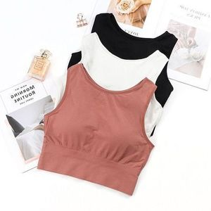 Pear Celebrity Style Vest Underwear Female Seamless Wrap-around Sports Yoga Comfortable No Steel Ring Breathable Seemless One-pi