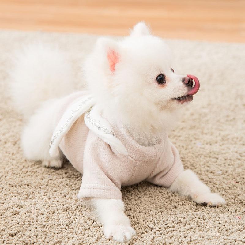 Nueva ropa para gatos otoño ropa para gatos bebé gato leche pequeño Gato sin Pelo gato anti-pelo suéter para mascotas ropa de invierno