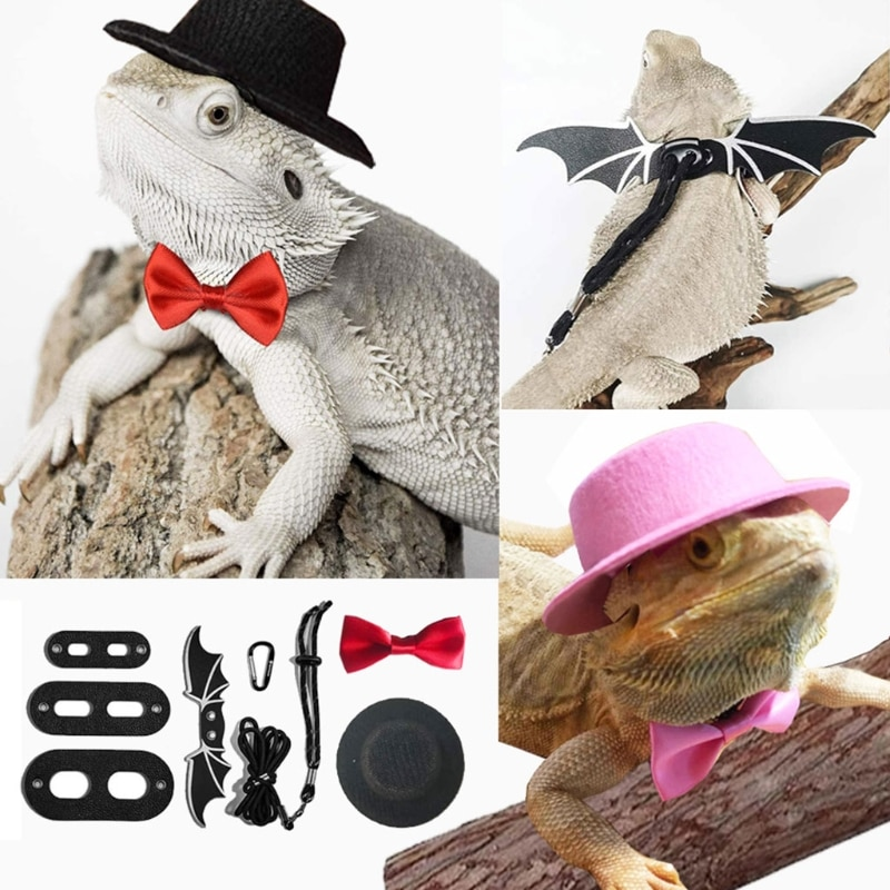 Lizard Traction Rope Hat Bow Tie Soft Leather Reptile Bearded Dragon Harness Leash Costume Clothes P