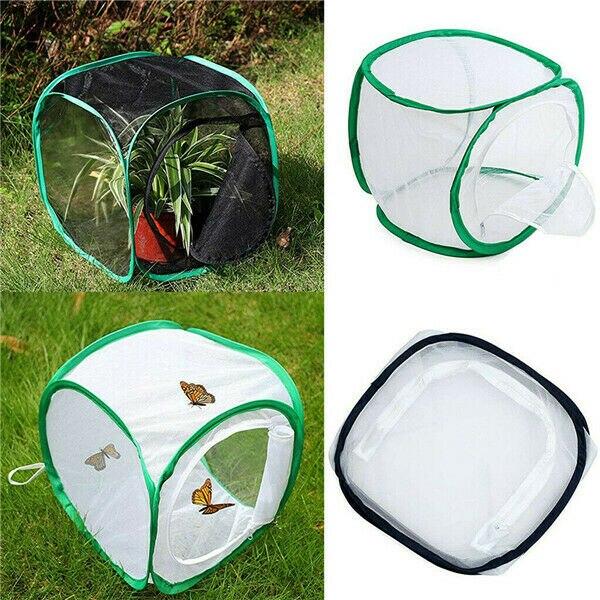 Jaula de red de mariposa camaleón, carcasa, Mantis de oración, palo de insecto, conveniente para almacenamiento