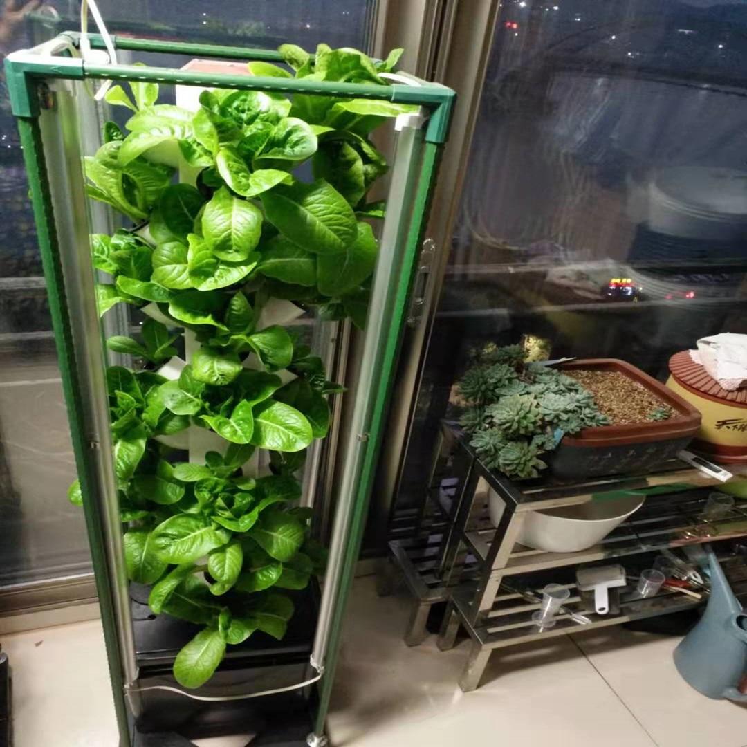 عمودي الزراعة المائية نظام متزايد مجموعة داخلية برج Aeroponics مع مصباح ليد (32 موقع النبات)