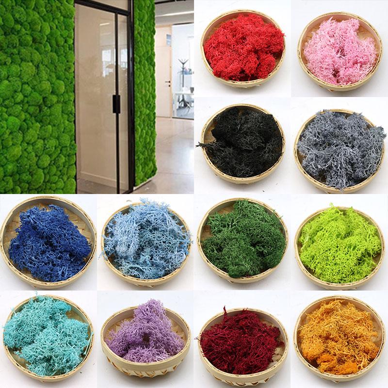 Diy Flower Artificial Green Plant Immortal Fake Flower Moss Grass Home Living Room Decorative Wall Mini Accessories Artificial Dried Flowers Aliexpress