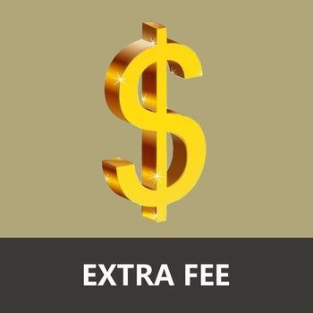 Extra Fee/cost just for the balance of your order/shipping cost USD2