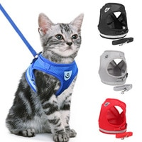 Шлейка для кошек и небольших собак Посмотреть