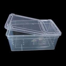 Boîte en plastique transparente insecte Reptile Transport élevage aliments vivants boîte dalimentation