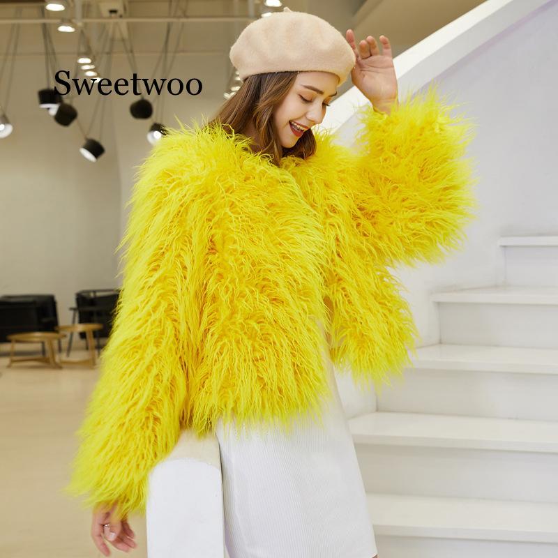hairy maclary scattercat Fashion Furry Faux Fur Coat Women Fluffy Warm Long Sleeve Female Outerwear Autumn Winter Coat Jacket Hairy Collarless Overcoat