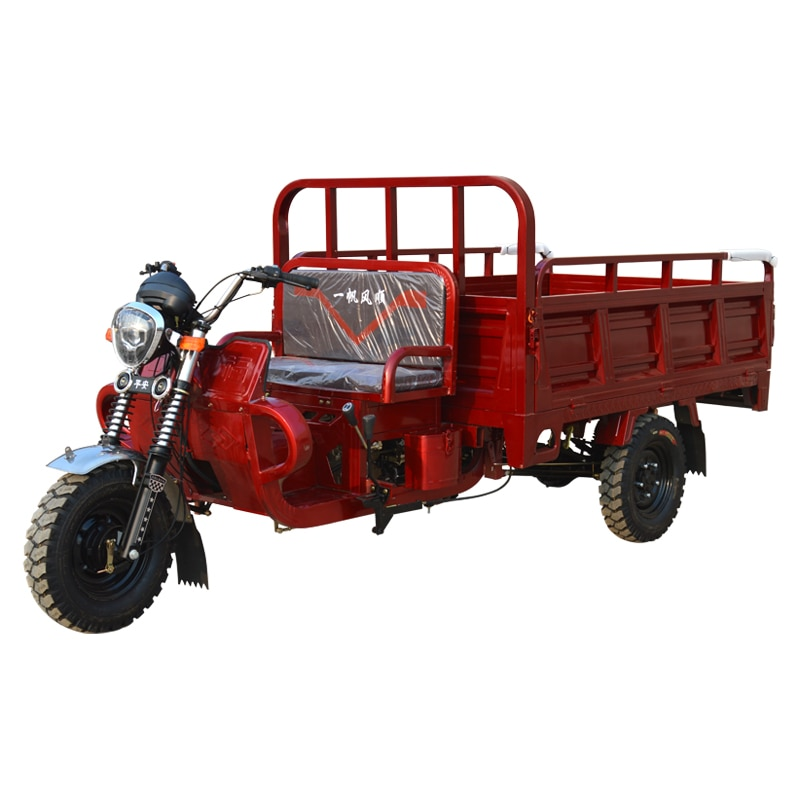 Manufacturer Air cooled type Three-wheeled motorcycles new mopeds new fuel-assisted tricycles