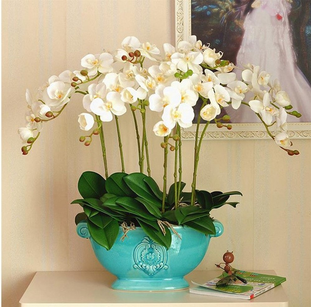 50Pcs Real touch phalaenopsis leaf Potted Plants DIY Wedding decorative flowers auxiliary flower Home decor Orchid leaves 4A