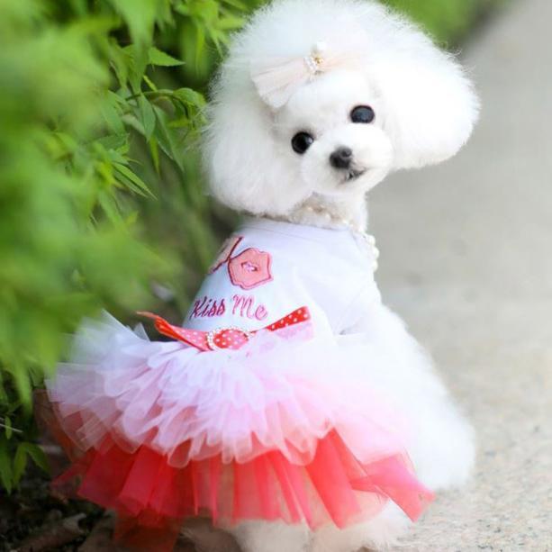 Pet Skirt Pet Dress Lips Veil Puppy Dog Cat Pretty Lace Skirt Lips Veil Princess Tutu Dress Clothes Costume Dog Accessories
