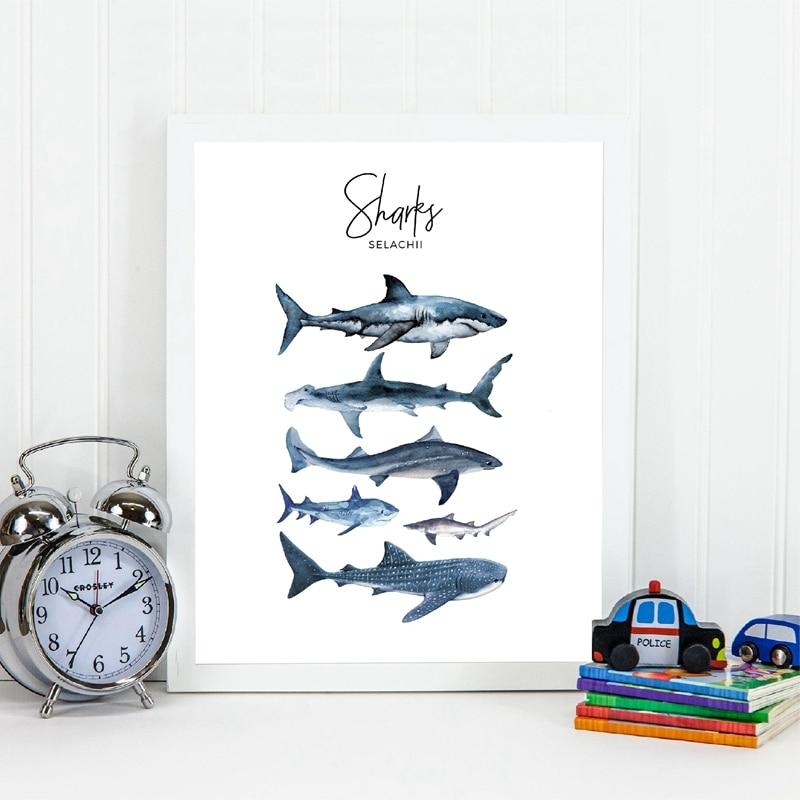Hai Arten Poster Drucke Junge Kindergarten Wand Dekor, Aquarell Sharks Wand Kunst Bild Leinwand Malerei Kinderzimmer Dekoration