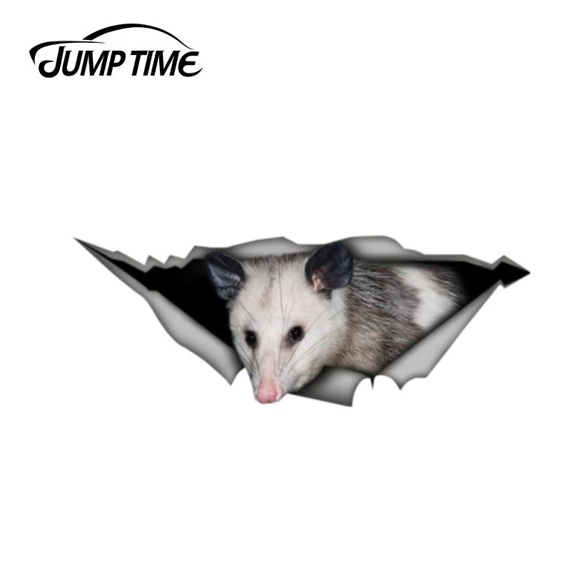 Jump Time 13cm x 4.8cm Opossum sticker 3D Pet Graphic Vinyl Decal Car Window Laptop Bumper Car Stickers
