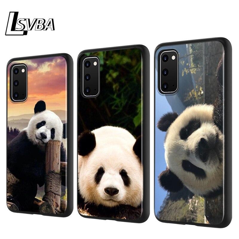 Funda de teléfono de silicona con bonito oso Panda para Samsung Galaxy S20 Ultra Plus A01 A11 A21 A31 A41 A51 A71 A91