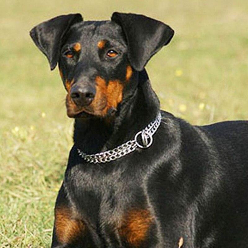 Doble fila perro cadena Material hierro plata trenzado P perro Collar para mascotas cachorro Collar grande Collar para mascotas