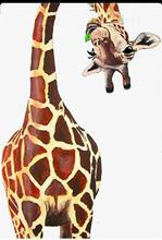 Girafe motif animal timbre et métal die Scrapbooking Alphabet timbre gaufrage artisanat faisant des timbres transparents en Silicone