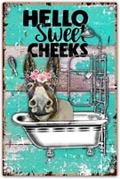 Hello Sweet Cheeks     citation dane drole de salle de bain  signe en etain en metal de ferme retro pour bureau maison salle de classe  decor de salle de bain