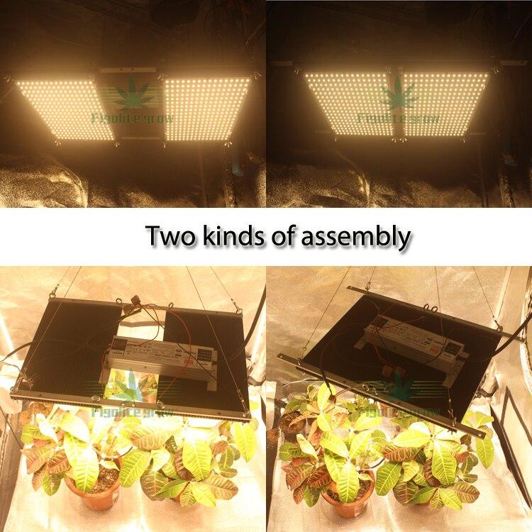 Figolite عكس الضوء 240 واط الكم التكنولوجيا سامسونج V3 مجلس Led تنمو ضوء QB288 LM301H مع ميانويل ، 7 سنوات الضمان