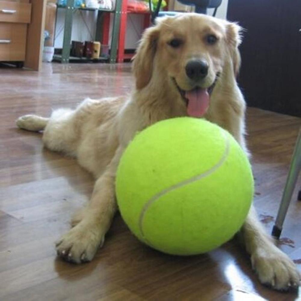 24cm gigante bola de tênis para o cão mastigar brinquedo grande inflável bola de tênis pet cão brinquedos interativos suprimentos para animais de estimação ao ar livre brinquedo do cão de críquete