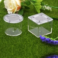 acrylic ant activity area insect box reptile tank anthill ant 1pcs