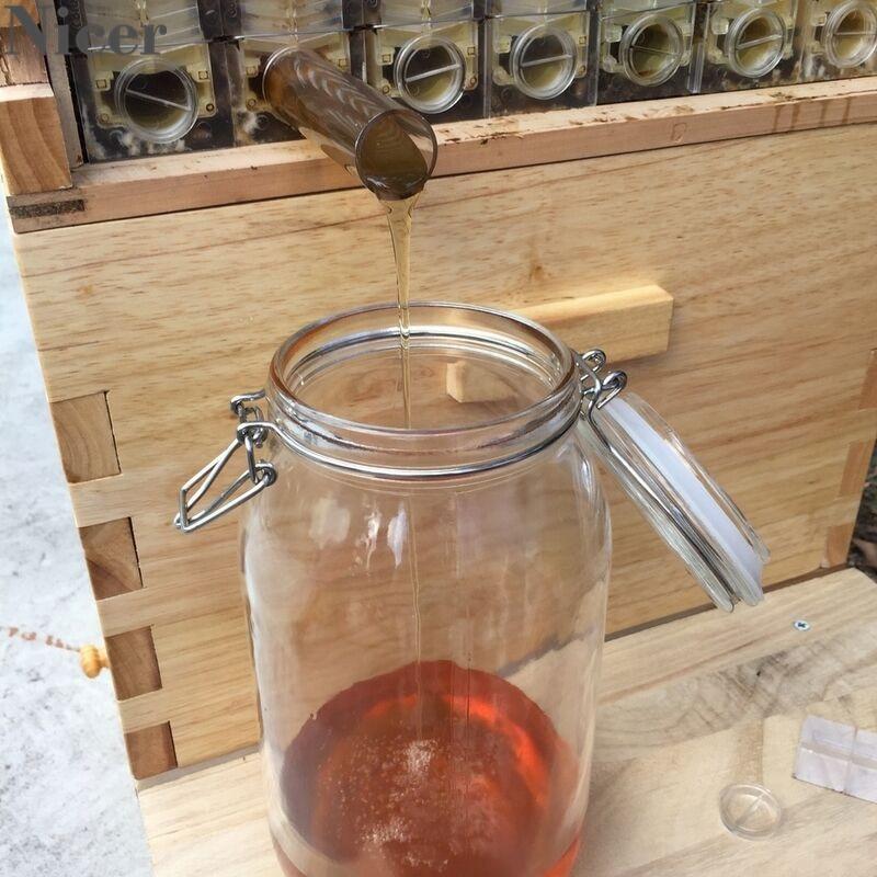 Bal arı kovanı ev otomatik kovanı çerçeveleri sedir ağacı arıcılık Brood ev kutusu bal koleksiyonu sınıfı malzemeleri