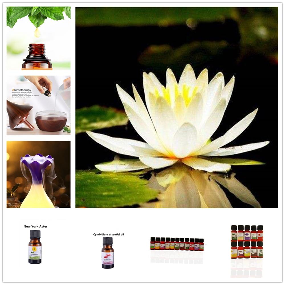 Gran oferta de aceites esenciales de peonía, aceites esenciales de aromaterapia 100% de Rosa puro chino, aceites esenciales básicos para aliviar el estrés, aceite de masaje corporal tipo Spa