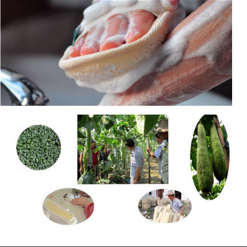 Cepillo de cerdas para el cuerpo Natural, esponja exfoliante efectiva, cepillo para masajes de baño, ducha, esponja redonda