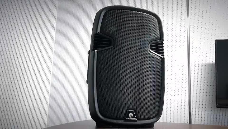 الجملة المهنية نظام الصوت با خط صفيف دي جي بالطاقة مكبرات الصوت