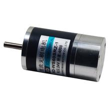 36W DC sans brosse électrique Machine 12V Micro électrique Machine 24V haute vitesse avant et inverse petit moteur intégré entraînement